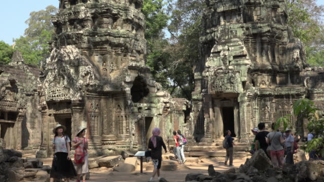 tourists in ta prohm temple - angkor wat stock videos and b-roll footage