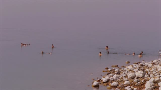 ms - tourists in the dead sea in jordan, middle east - jordan middle east stock videos and b-roll footage