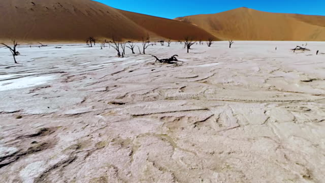 stockvideo's en b-roll-footage met heli tourists in the dead vlei - namibië