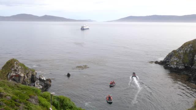 vídeos de stock, filmes e b-roll de tourists landing in cape horn island - passear sem destino