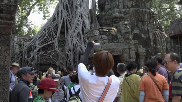 TD / Tourists looking at strangler fig tree roots growing over Ta Prohm temple