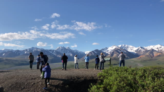 tourists looking at view and taking pictures inside the denali national park - denali national park stock videos & royalty-free footage