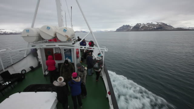 tourists on a tourist boat sailing on billefjorden fiord enjoying the arctic scenery - スヴァールバル諸島およびヤンマイエン島点の映像素材/bロール