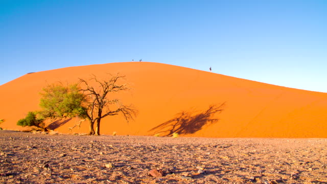 DS WS Tourists On Namibian Sand Dunes