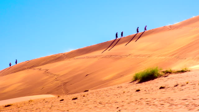 ws tourists on namibian sand dunes - named wilderness area stock videos & royalty-free footage