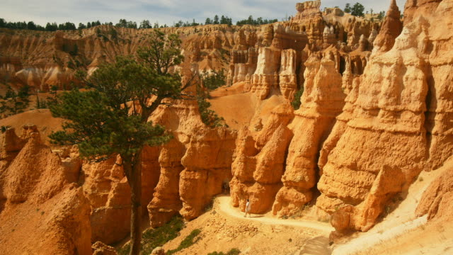 t/l, ws, ha, tourists on queens garden path, bryce canyon national park, utah, usa - bryce canyon stock videos & royalty-free footage