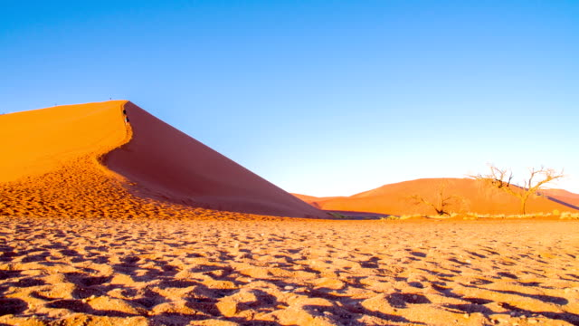 ds ws tourists on sand dune in the namibian desert - namibian desert stock videos and b-roll footage