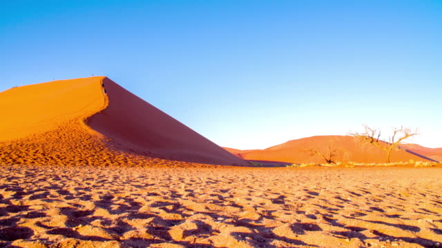 DS WS Tourists On Sand Dune In The Namibian Desert