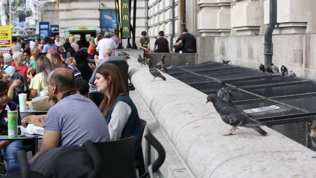 Tourists outside a cafe on the South Bank with pigeons and Starlings scavenging food London UK