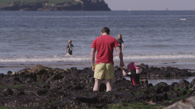 Tourists play in rock pools and shallows on beach, Devon, England