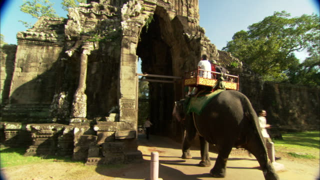 tourists ride an elephant into the angkor wat temple complex in cambodia. - tourism stock videos & royalty-free footage