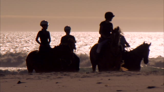 Tourists ride horses on a beach. Available in HD