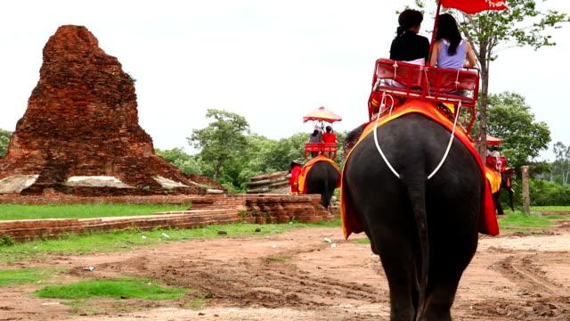 vidéos et rushes de touristes balade à dos d'éléphant - monter un animal ou sur un moyen de transport