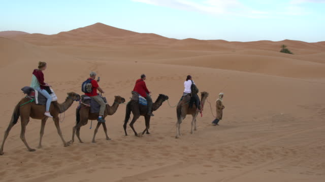 Tourists riding camels from the village of Merzouga to a tourist camp into the dunes of Erg Chebbi, Saharan Morocco