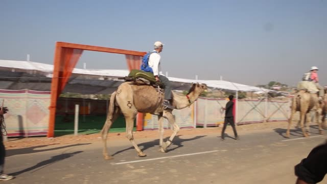 tourists take a camel ride through the fairgrounds of the pushkar camel fair in pushkar, rajasthan, india, on friday, nov 20 a herder guides a camel... - herder stock videos & royalty-free footage