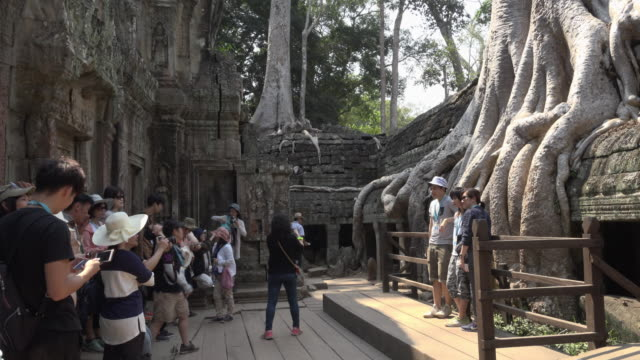 Tourists take pictures from Ta Prohm temple with strangler fig tree roots