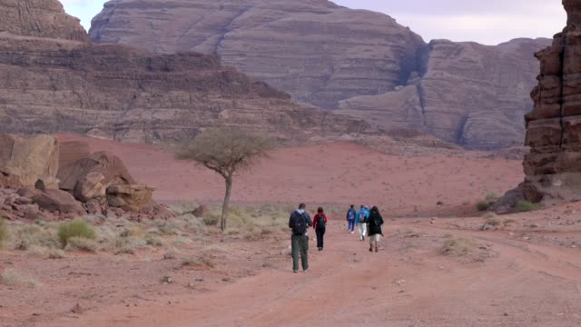 tourists trekking through wadi rum desert wilderness early in the morning, jordan - torr bildbanksvideor och videomaterial från bakom kulisserna
