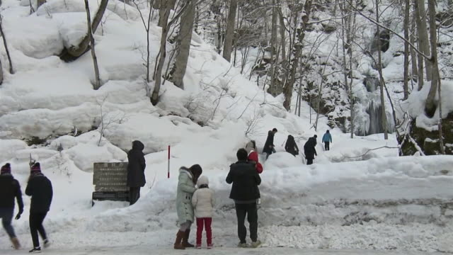 tourists visiting waterfall, aomori, japan - oirase river stock videos & royalty-free footage