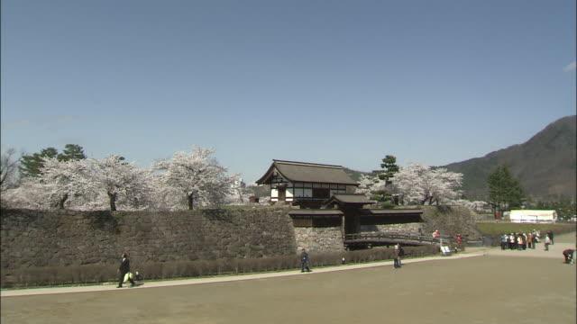Tourists walk along a pathway to view blooming Yoshino cherry trees at Matsushiro Castle.