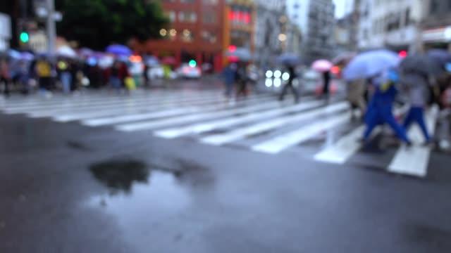 Touristen zu Fuß über Zebra-Kreuzung