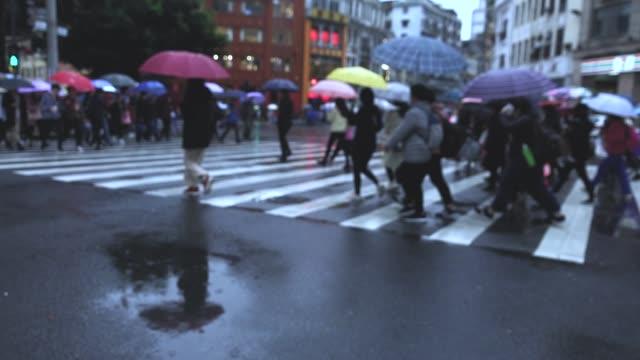 touristen zu fuß über zebra-kreuzung - crossing stock-videos und b-roll-filmmaterial
