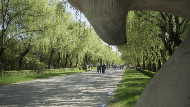 tourists walking on footpath with bactrian camel statue at ming dynasty tombs - beijing, china - ming tombs stock videos and b-roll footage