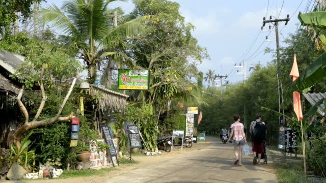 tourists walking through a picturesque thai village - 村点の映像素材/bロール