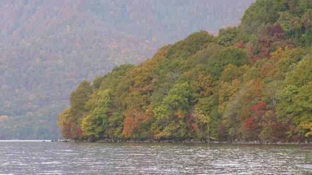 towada lake in aomori, japan - aomori prefecture stock videos & royalty-free footage