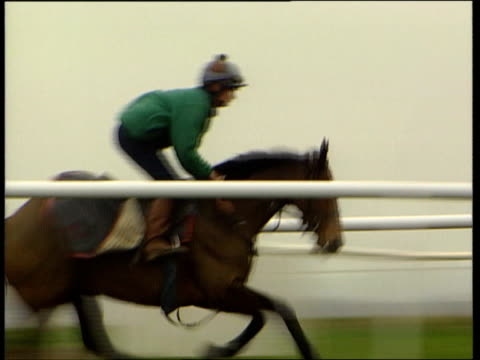 towcester seq race horses being exercised at race track as v/o dick francis comment about corruption in racing sot i/c cs price written on bookie's... - vulnerability stock videos and b-roll footage