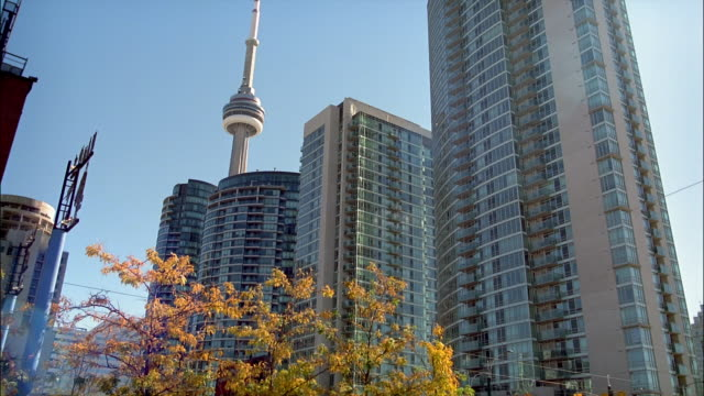 MS, CN Tower and skyscrapers, Toronto, Ontario, Canada