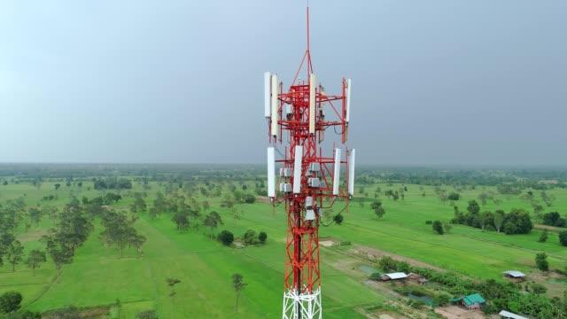 vídeos y material grabado en eventos de stock de torre móvil - antena parte del cuerpo animal