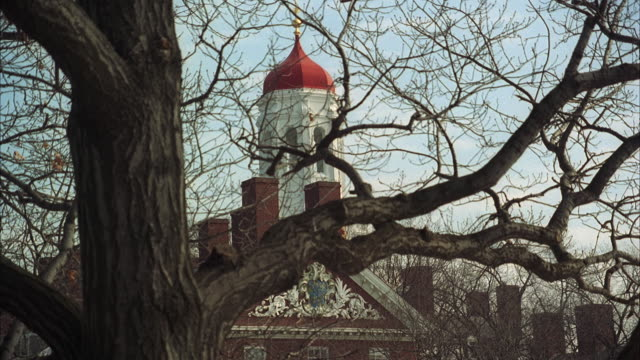stockvideo's en b-roll-footage met ms tower of harvard university in winter, bare tree in foreground / cambridge, massachusetts, usa - harvard university