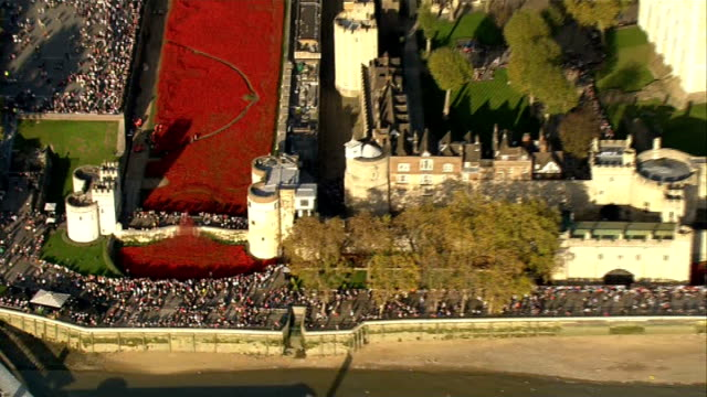 stockvideo's en b-roll-footage met tower of london poppies people asked to delay visit england london ext air view / aerial art installation in the moat of the tower of london... - gracht