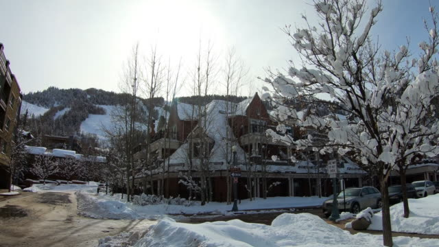 town of aspen, colorado, snow covered trees - aspen tree stock videos & royalty-free footage