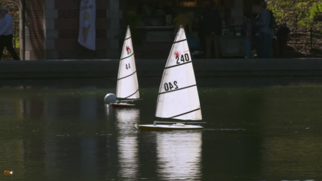 Toy sail boats glide on the pond in Central Park.