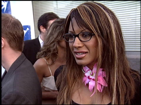 traci bingham at the angel food awards on august 21, 2004. - traci bingham stock videos & royalty-free footage