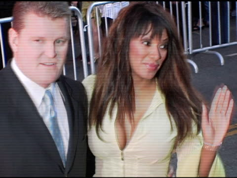 traci bingham at the 'ladder 49' premiere at the el capitan theatre in hollywood, california on september 21, 2004. - traci bingham stock videos & royalty-free footage