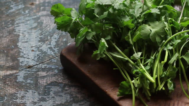 track across coriander on wooden chopping board - cilantro stock videos and b-roll footage