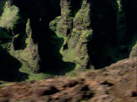 stockvideo's en b-roll-footage met track across vast grassy canyon hawaii - plant attribute