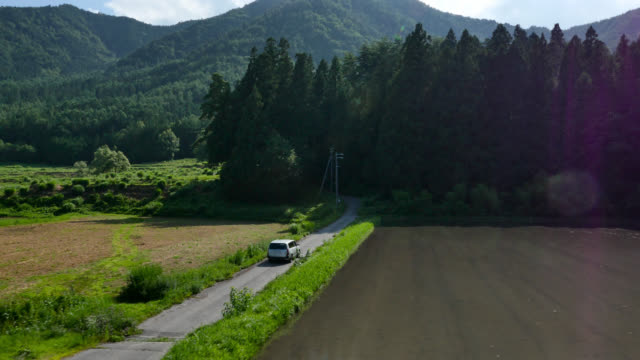 track along forest road, japan. - land vehicle stock videos & royalty-free footage