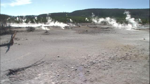 vídeos y material grabado en eventos de stock de track forward behind guard walking along wooden walkway across norris geyser basin - oficio agrícola