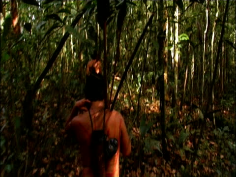 vídeos de stock e filmes b-roll de track forward following two sanema tribesmen through dense vegetation during hunt south venezuelan rainforest - cultura indígena