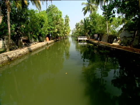 track forward from boat along narrow green river with palm trees on river bank india - narrow stock videos & royalty-free footage