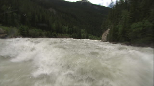 Track forward from raft down rapids on Kicking Horse River, Canadian Rocky Mountains Park, Canada