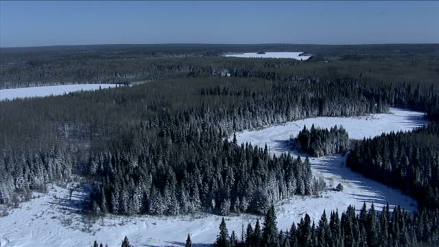 track forward over a frozen river winding through the boreal forests of northern canada. available in hd. - 寒帯林点の映像素材/bロール