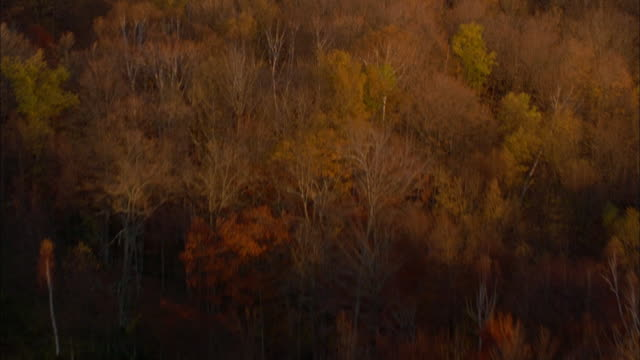 Track forward over farm houses and forest in autumn leaf, Rhinebeck\n Available in HD.