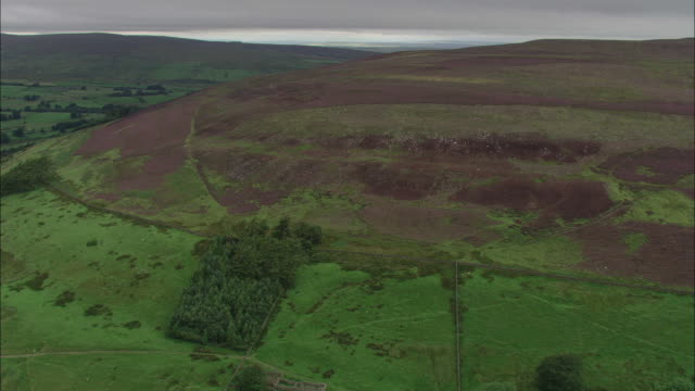 track forward over hills. available in hd. - northumberland video stock e b–roll
