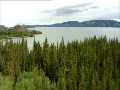 Track forward over large forests to vast Yukon river