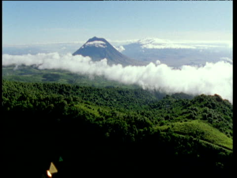 track forward over lush green african forest, mountain peak in the distance - tree canopy stock videos and b-roll footage