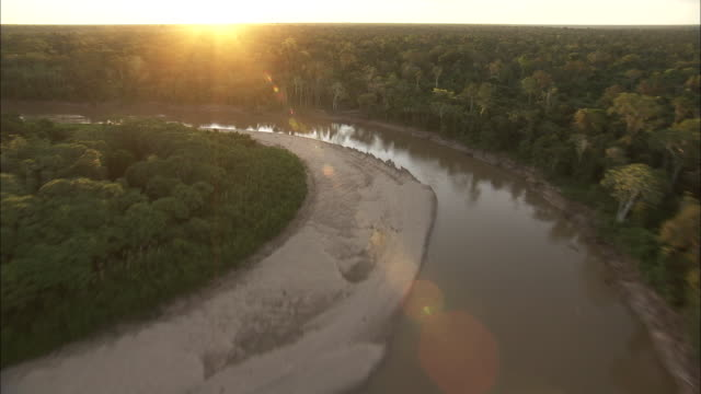 Track forward over river towards dense rainforest bathed in sunlight Available in HD.